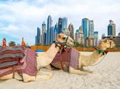 Прокат авто ОАЕ - Об'єднані Арабські Емірати