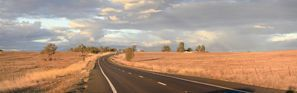 Оренда авто Gunnedah, Австралія