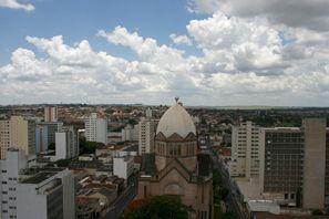 Оренда авто Араракуара, Бразилія