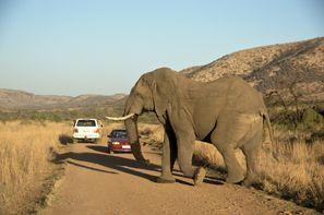 Оренда авто Клерксдорп, Південна Африка