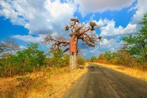 Оренда авто Макадо, Південна Африка