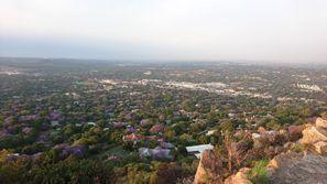 Оренда авто Роузбанк, Південна Африка