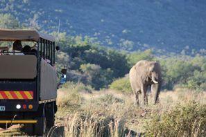 Оренда авто Фрейбург, Південна Африка