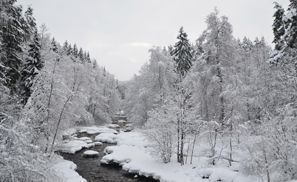 Оренда авто Нурміярві, Фінляндія